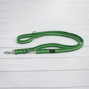 apple green training lead for dogs