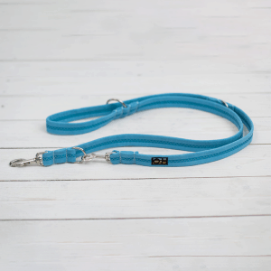 ocean breeze blue training lead for dogs