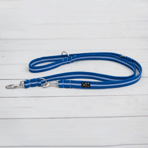 bright blue training lead for dogs