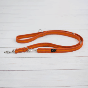 clementine orange training lead for dogs