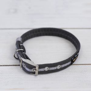 Grey Oscar and Hooch dog collar