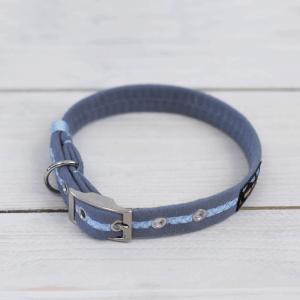 Sky blue Oscar and Hooch dog collar