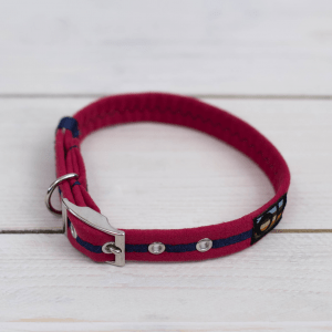 Bright red Oscar and Hooch dog collar