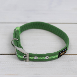 Green Oscar and Hooch dog collar