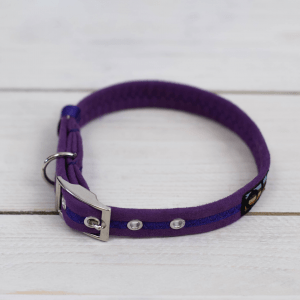 Purple Oscar and Hooch dog collar