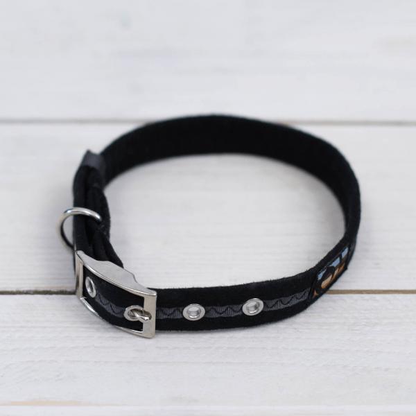 Black Oscar and Hooch dog collar