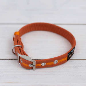 Bright orange Oscar and Hooch dog collar