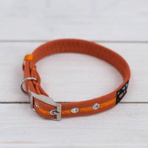 Bright orange Oscar and Hooch dog collar