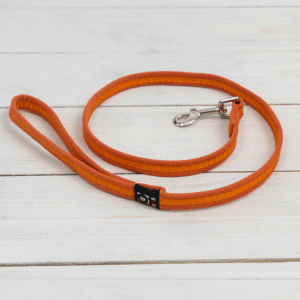 Bright orange fabric dog lead