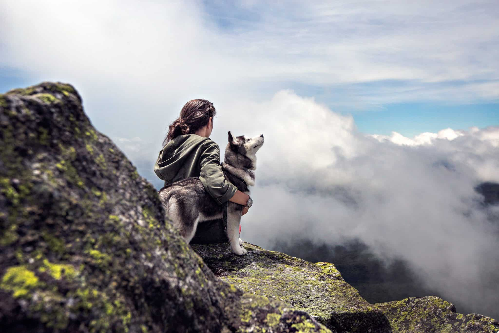 Dog and its owner on a mountain looking out at the view
