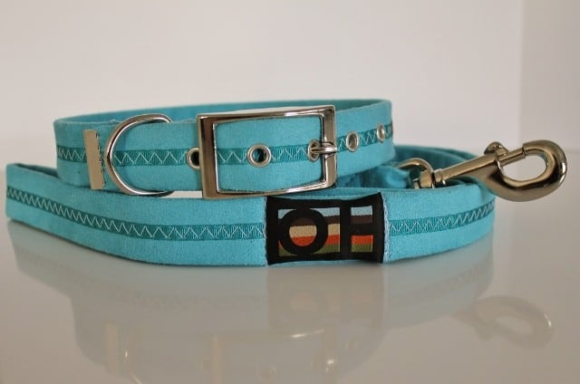 Blue dog collar and lead set