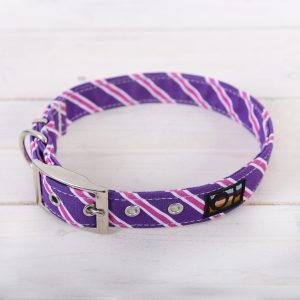 Purple and pink dog collar
