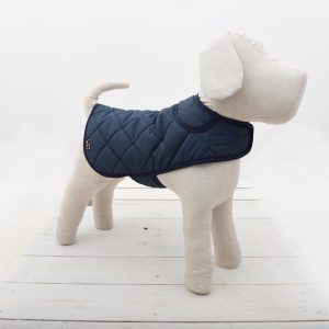 quilted blue dog coat