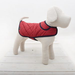 quilted red dog coat