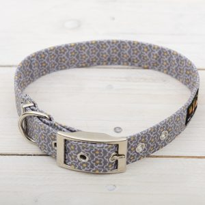 grey daisy collar