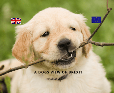 A dogs view of Brexit