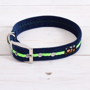 Neon green dog collar