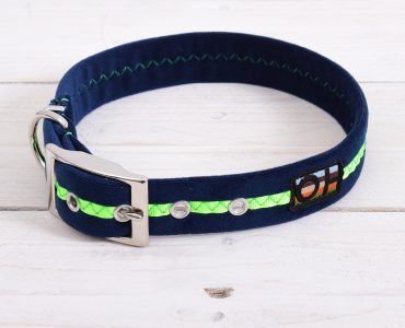 Gorgeous new neon collars and leads