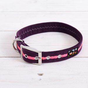 Neon pink dog collar