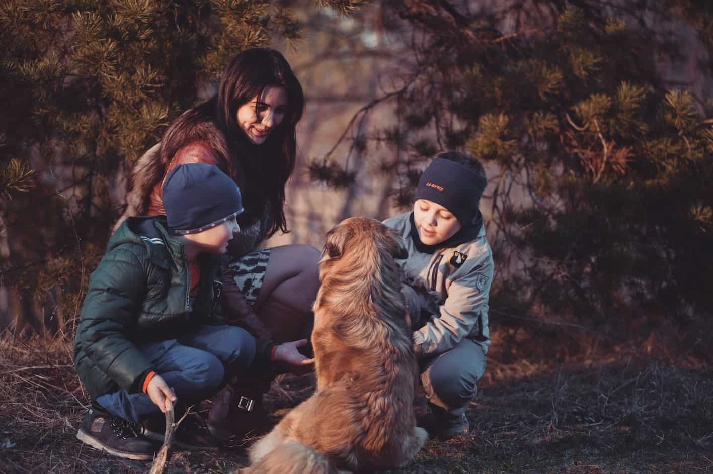 discover national parks at easter with the family and dog