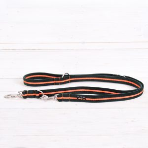 Neon orange dog training lead