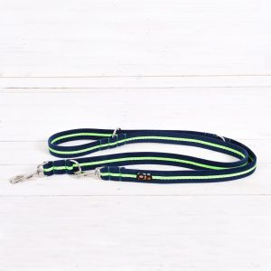 Neon green dog training lead