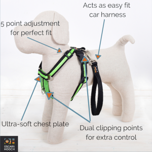 Harness features