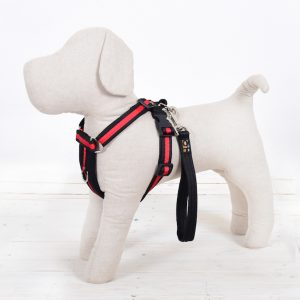 Black Red Dog Harness