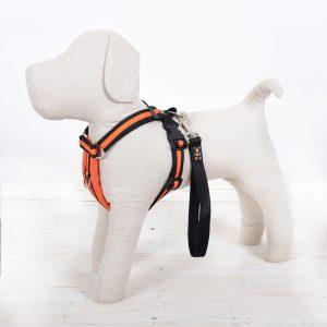 Orange Dog Harness